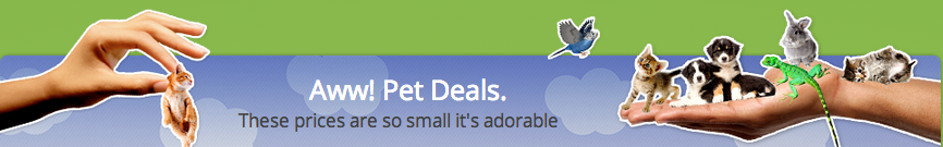 Groupon Pet Deals